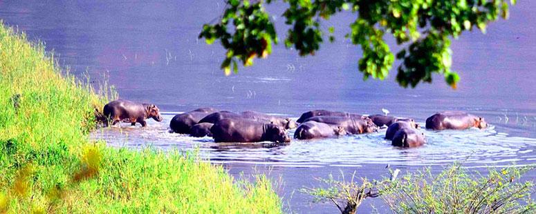 Nsumbu National Park